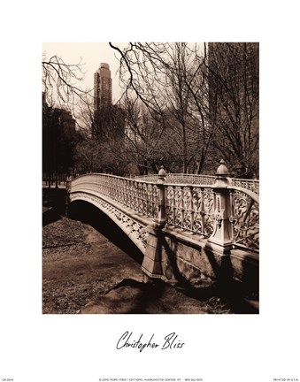 Framed Central Park Bridges II Print