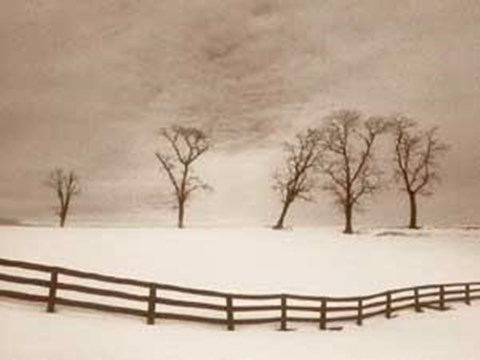 Framed Snowscape with Fence Print