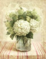 Cottage Hydrangeas in White Art