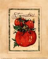Vintage Tomatoes  Fine Art Print