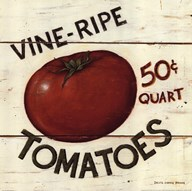 Vine Ripe Tomatoes  Fine Art Print