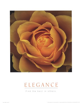 Framed Elegance - Peach Rose Print