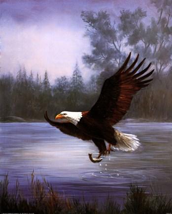 Eagle Fishing Fine Art Print By Marianne Caroselli At