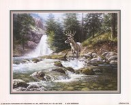 Bucks Near Waterfall Art