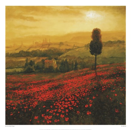 Framed Shades Of Poppies Print