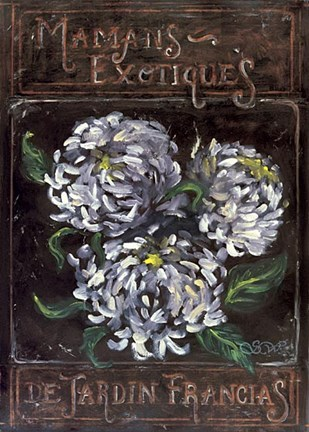 Framed Exotic Mums From The French Garden Print