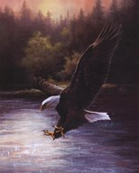 Eagle Prey  Fine Art Print