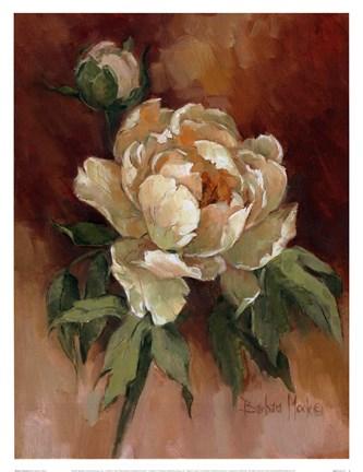 White Peonies Ii Fine Art Print By Barbara Mock At