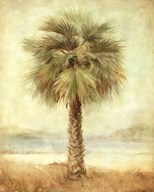 Mirage Palm I