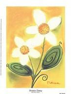 Shasta Daisy Art