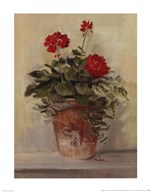Potted Geraniums II Art