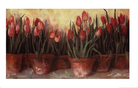 Framed Patty's Tulips Print