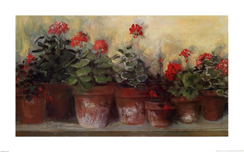 Kathleen S Geraniums Fine Art Print By Carol Rowan At