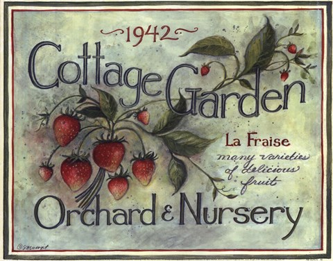 Framed Cottage Garden I Print
