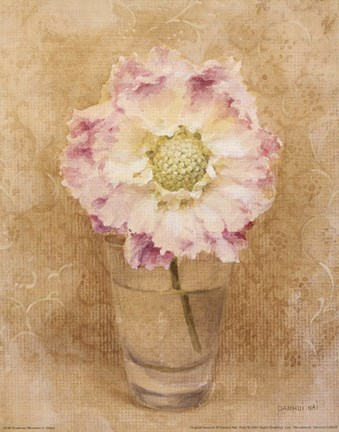 Framed Scabiosa Blossom In Glass Print