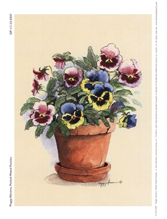 Framed Potted Mixed Pansies Print