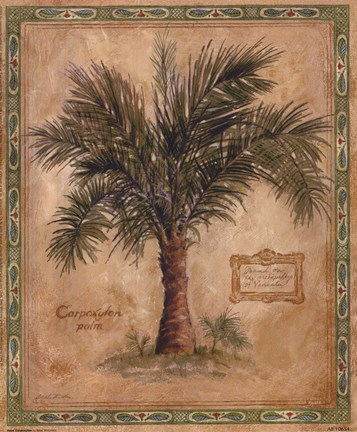 Framed Palm Carpoxylon Print