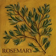 Rosemary Art