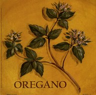 Oregano Art