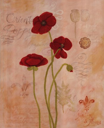 Framed Poppy Fresco II Print