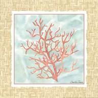 Ocean Coral  Fine Art Print