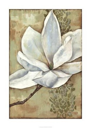 Framed Magnolia Majesty II Print