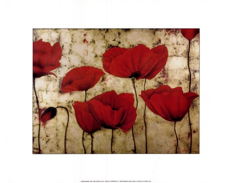 Framed Poppies II Print
