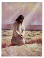 The Shepherd  Fine Art Print