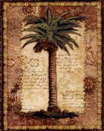 Classic Palm I
