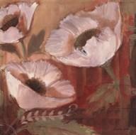 Amapola Blanca II  Fine Art Print