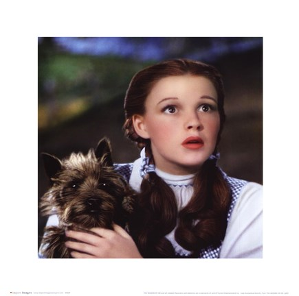 Framed Wizard of Oz - Dorothy and Toto Print