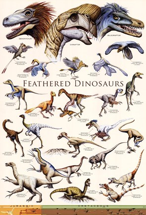 Framed Feathered Dinosaurs II Print