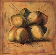 Cocos Locos I Art