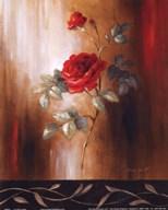 Crimson Rose II  Fine Art Print