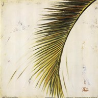Baru Palm II Art