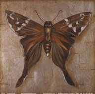 Brown Butterfly  Fine Art Print