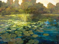 Waterlilies Art