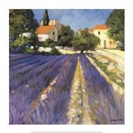 Lavender Fields Art