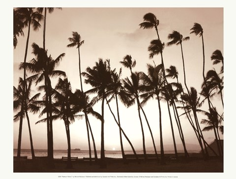 Framed Platinum Palms I Print
