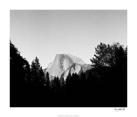 Framed Half Dome In Trees Print