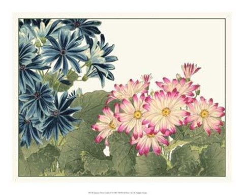Framed Japanese Flower Garden IV Print