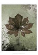 Dry Leaf I Art