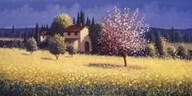 Spring Blossoms Art