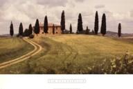 Springtime In Tuscany  Fine Art Print
