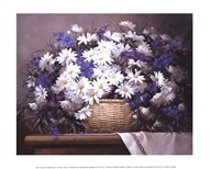 Daisies and Delphiniums Art