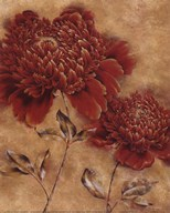 Glorious Rosso I  Fine Art Print