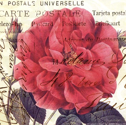 Framed Carte Postale Rose I Print