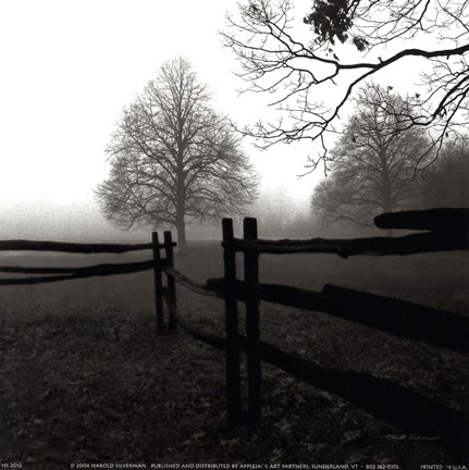 Framed Fence in the Mist Print