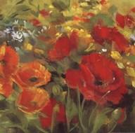 Oriental Poppy Field I Art