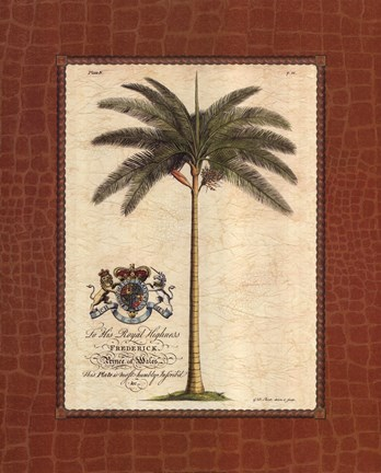 Framed Date Palm Print